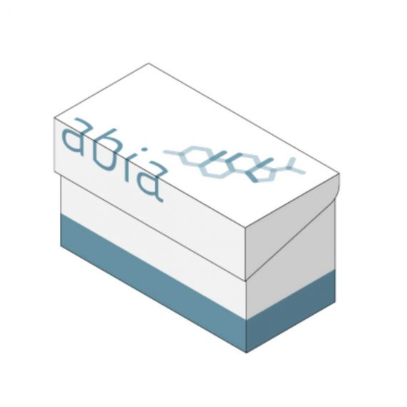FSH Elisa Kit