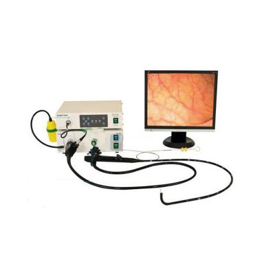 Endoview Video Gastrointestinal Endoscopy Stack....